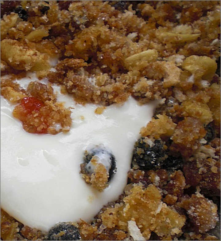 Steamed Eggless Traditional Christmas Cake