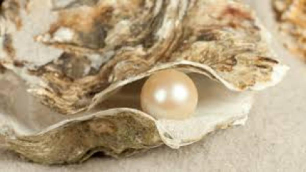The World of Pearls!!!