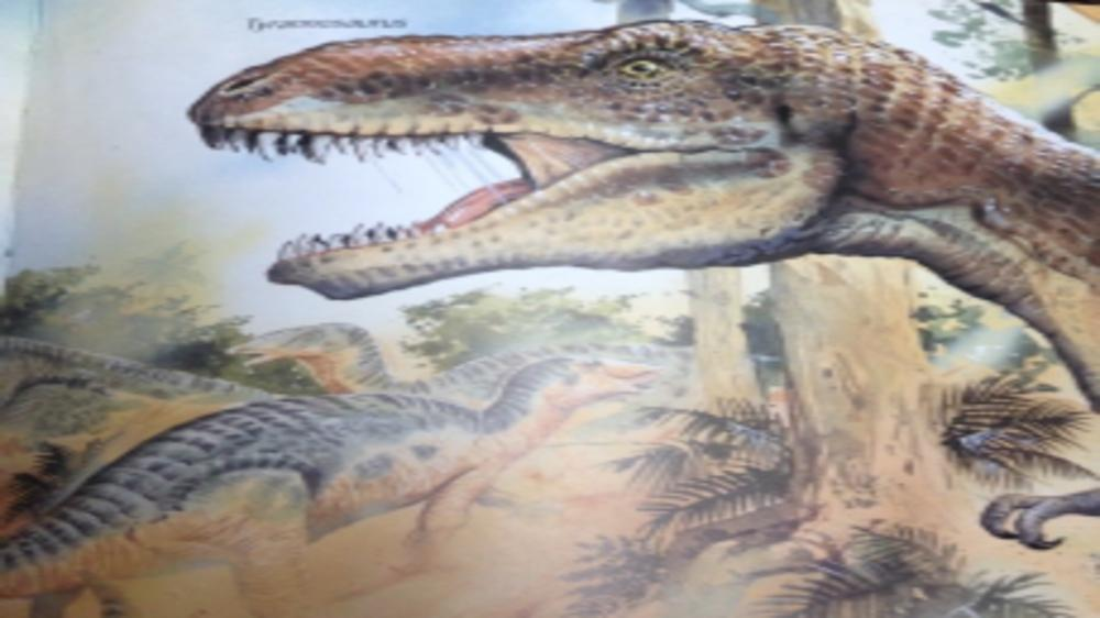 5 Unexpected Ways In Which Dinosaurs Helped Me!
