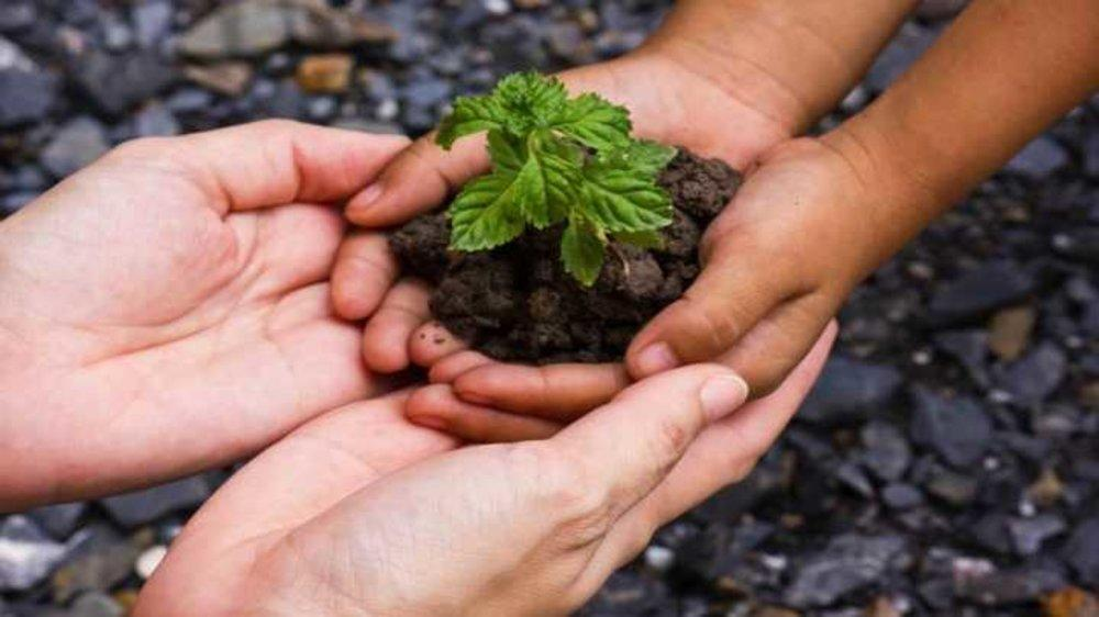 Plant a Tree! Nurture the Nature Lover in Your Child in Delhi-NCR