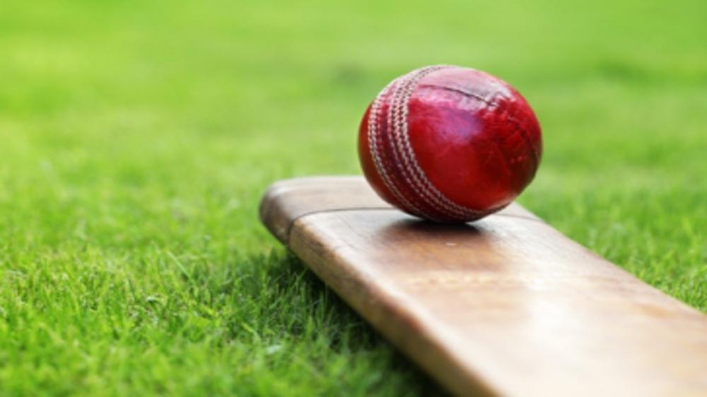 It's a SIX! Best Cricket Academies in Delhi-NCR