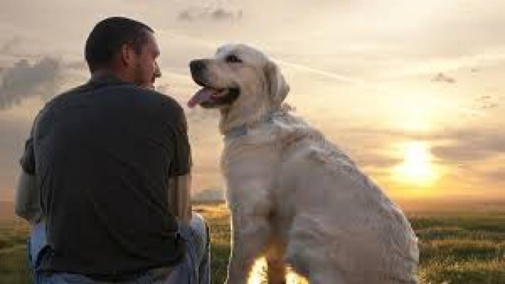Dogs a man's best friend or vice versa??