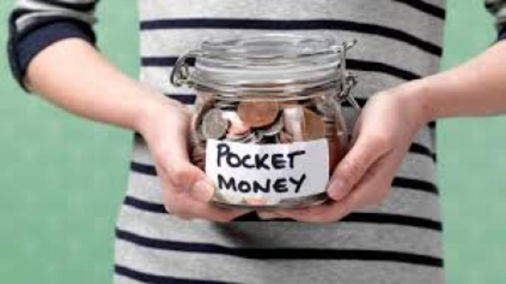 Dos & Don'ts of Pocket Money. Give:Save:Donate:Spend!