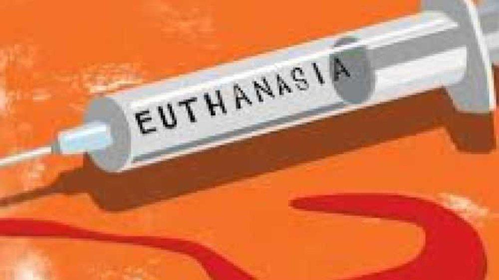 Euthanasia ???