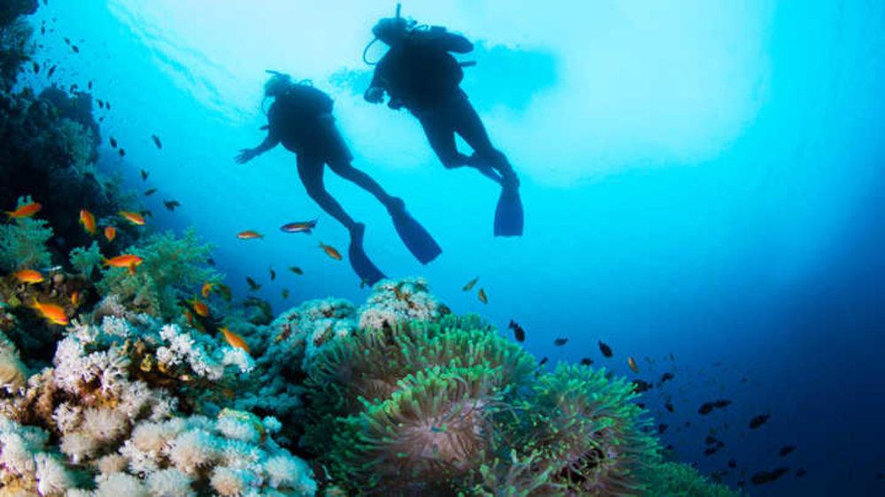 Best SCUBA Dive Destinations in India